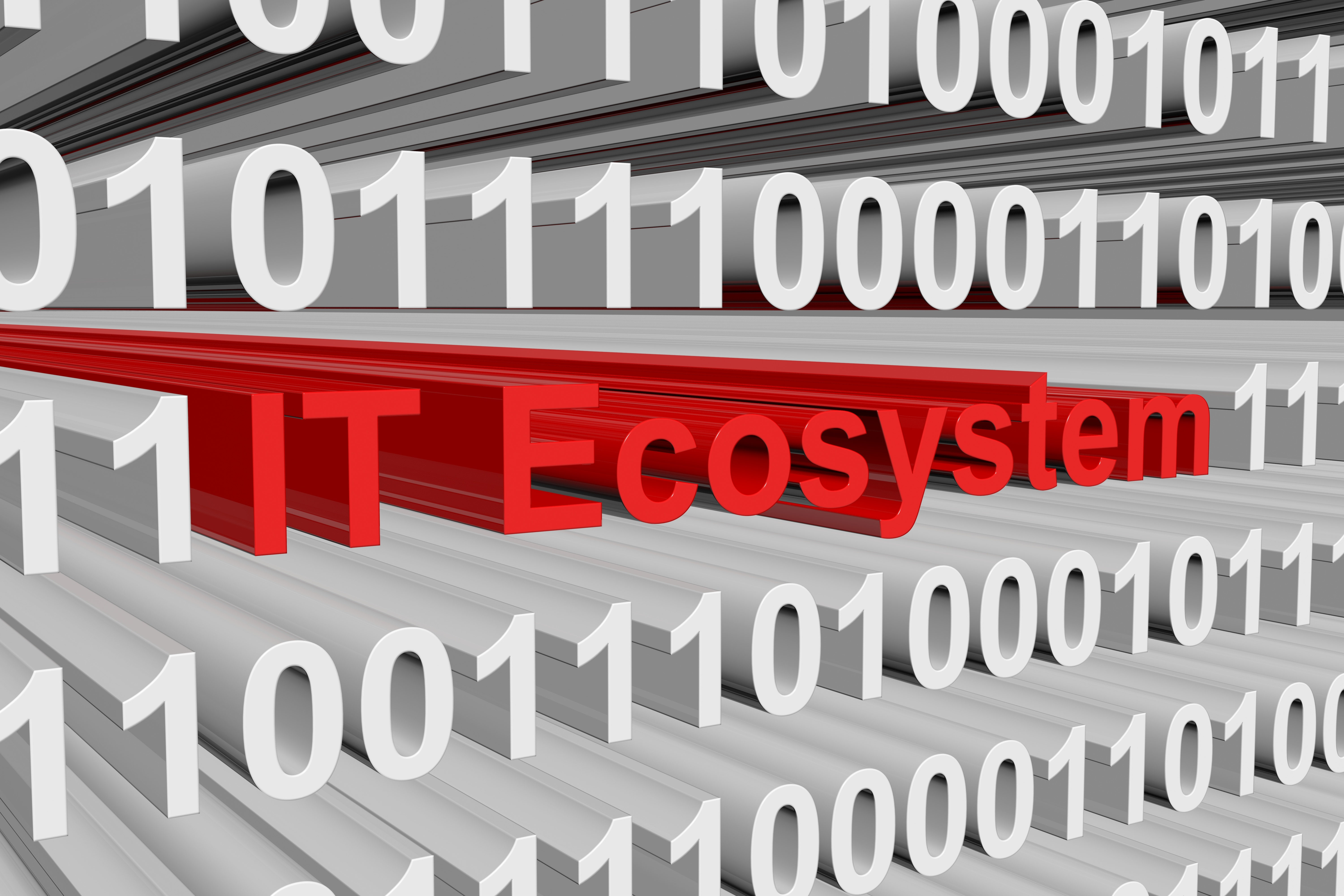The IT Ecosystem is presented in the form of binary code